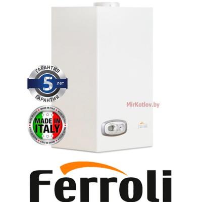 Газовый котел Ferroli Divatech D C32 (двухконтурный котел, открытая камера)