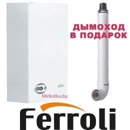 Газовый котел Ferroli Divabel F24 (двухконтурный котел, закрытая камера)