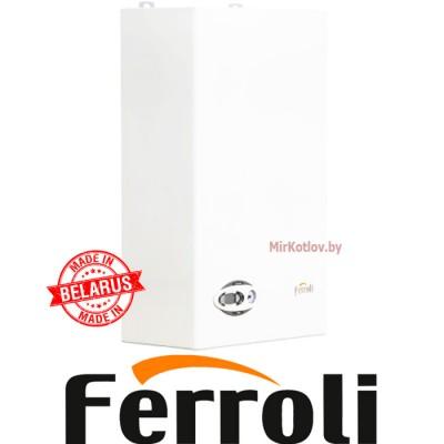Купить Газовый котел Ferroli Divabel F24 (двухконтурный котел, закрытая камера)  6 в Минске с доставкой по Беларуси