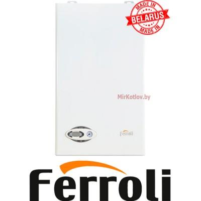Купить Газовый котел Ferroli Divabel F10 (двухконтурный котел, закрытая камера)  5 в Минске с доставкой по Беларуси