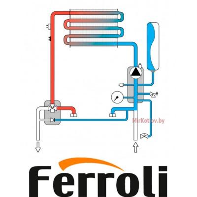 Купить Газовый котел Ferroli Fortuna H F40 (одноконтурный котел, закрытая камера)  4 в Минске с доставкой по Беларуси