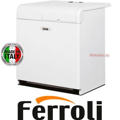 Напольный газовый котел Ferroli Pegasus 87 2S (одноконтурный атмосферный)