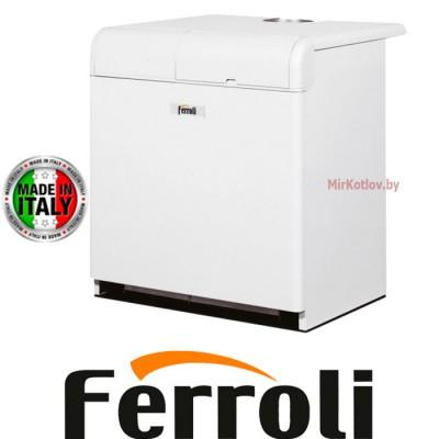 Напольный газовый котел Ferroli Pegasus 56 (одноконтурный атмосферный)