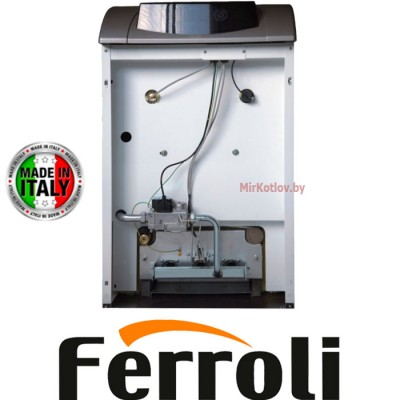 Напольный газовый котел Ferroli Pegasus D 45 (одноконтурный атмосферный)