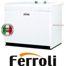 Напольный газовый котел Ferroli Pegasus F3 N 119 2S (одноконтурный атмосферный)