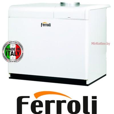 Напольный газовый котел Ferroli Pegasus F3 N 255 2S (одноконтурный атмосферный)