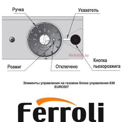 Напольный газовый котел Ferroli Torino 10 (энергонезависимый, одноконтурный, атмосферный)