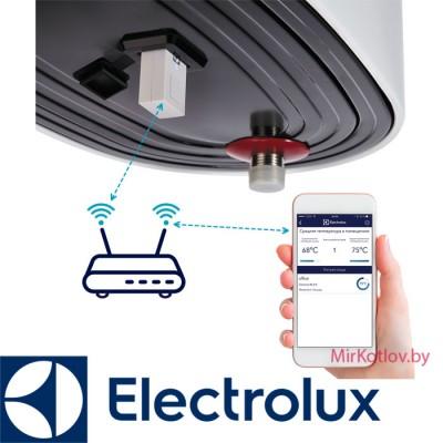 Электрический накопительный водонагреватель Electrolux EWH 100 Centurio IQ 2.0 Silver