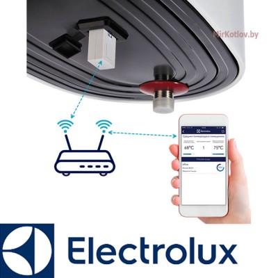 Купить Модуль съемный управляющий Electrolux ECH/WF-01 Smart Wi-Fi  2 в Минске с доставкой по Беларуси